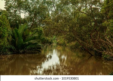 The Sundarbans, Khulna, Bangladesh 2016. A view of The Sundarbans, the largest mangrove forest in the coastal region of the Bay of Bengal and considered one of the natural wonders of the world.