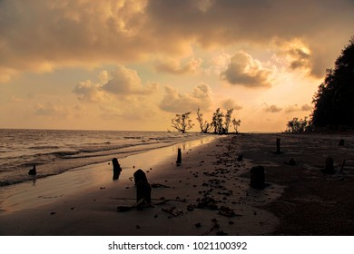 The Sundarbans, Khulna, Bangladesh 2016. A view of the sunset at Sundarban, the largest mangrove forest in the coastal region of the Bay of Bengal, considered one of the natural wonders of the world.