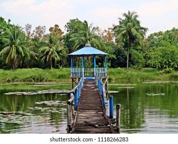 Sundarbans National Park, Bangladesh