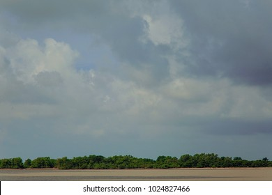 The Sundarbans, September 10, 2016. A landscape view of The Sundarbans mangrove forest, one of the largest such forests in the world.