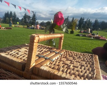 Sunday afternoon at a picnic with sofa, basket and sun