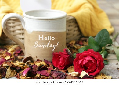 Sunday concept. Sunday greeting - Hello Sunday, written on a cup of morning coffee with two red roses flower decoration and dried petals scattered background.