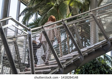 Sunderland - Great Britain / April 13, 2019 : Mother and child climbing stairway inside a winter garden hot glass house with tropical plants