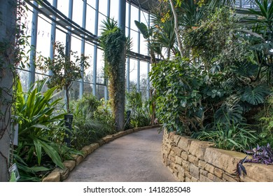Sunderland - Great Britain / April 13, 2019 : Pathway through a winter garden hot glass house with tropical plants