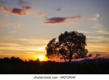 sundown in nature