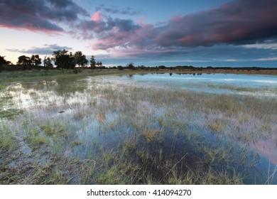 sundown over wild lake after the rain, Kampina, Netherlands