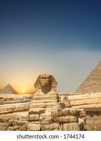 Sundown Sphinx