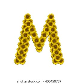 Sunflower alphabet isolated on white background, letter M