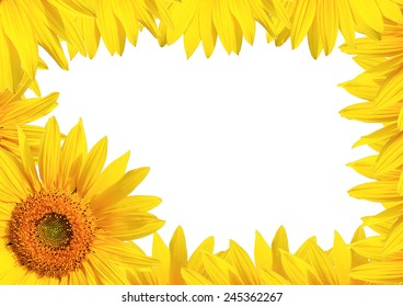 Sunflower Background for presentation/Sunflower Background/Sunflower