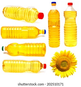 Sunflower and a bottle of sunflower oil isolated on white background