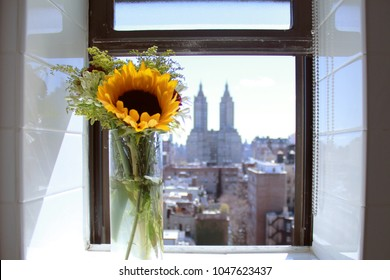 Sunflower bouquet in window sill with view of NYC buildings
