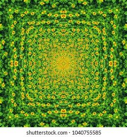 Sunflower field, above view.Kaleidoscope effect