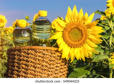 Sunflower oil is with the flowers of sunflower