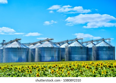 Sunflower oil production plant and sunflower field.
