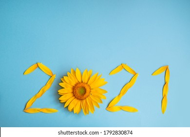 Sunflower petals in the form of numbers 2021 on a blue background. 2021 new year new reality. summer it is time for traveling