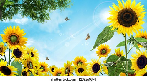 Sunflower photo collage with a blue sky and butterflies flying. green leaves and realistic trees. Sunny day. blue sky with clouds.
