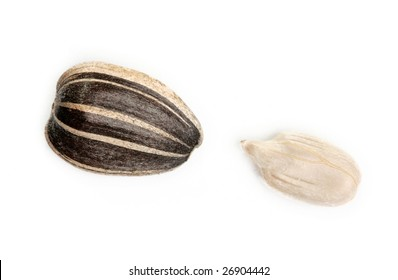 sunflower seed isolated on white background