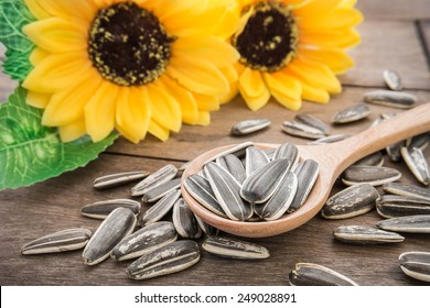 Sunflower seed on wooden spoon