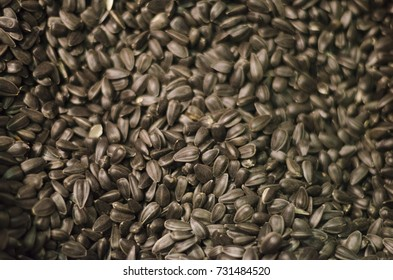 Sunflower seeds. Seeds
