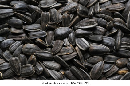 Sunflower seeds, black