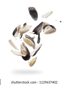 Sunflower seeds crushed into pieces close-up isolated on white background