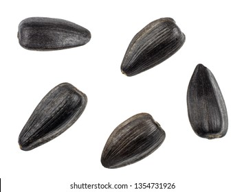 Sunflower seeds isolated on white background, top view.