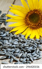 Sunflower seeds on a wooden background, selective focus