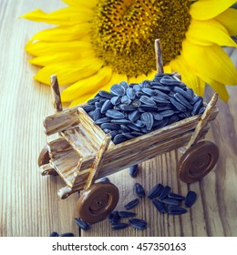 Sunflower seeds in a small decorative wagon