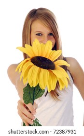 A sunflower for summer