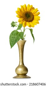 Sunflower in vase isolated on white background