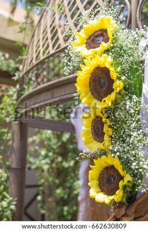 Sunflower Wedding Decorations Babys Breath Flowers Stock Photo Edit