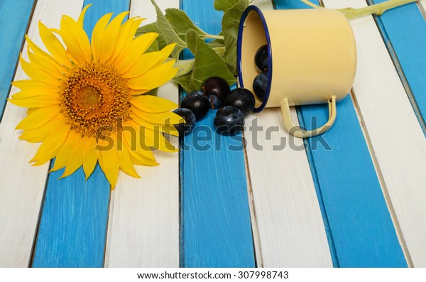 the sunflower,  yellow cup, plum and colored wooden slats