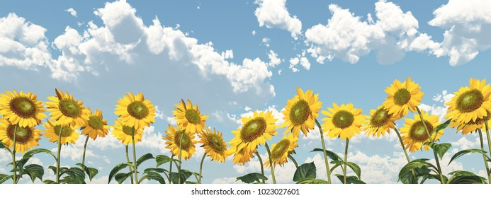 Sunflowers against a blue sky with nice weather clouds Computer generated 3D illustration