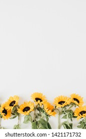 Sunflower Flat Lay Images Stock Photos Vectors Shutterstock