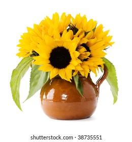 Sunflowers over white