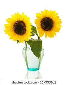 sunflowers in a vase isolated on white background
