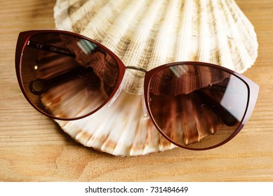 sunglasses on the shell