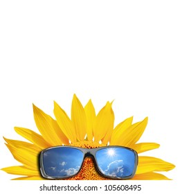Sunglasses and sunflower isolated on a white