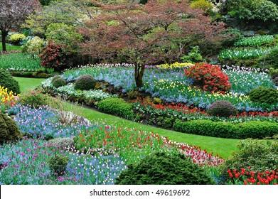 Sunken garden inside the historic butchart gardens in spring, victoria, british columbia, canada