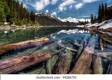 Sunken logs in crystal clear mountain lake