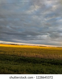 Sunkissed Fields Before a Storm