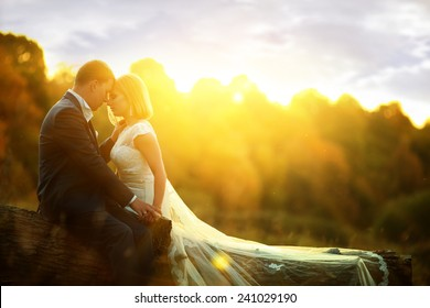 Sunlight bride and groom at wedding in the forest sitting on the