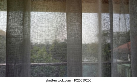 Sunlight Curtain in Bedroom Outside Tree View