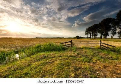sunlight over Dutch farmland in summer, Netherlands