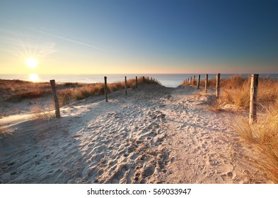 sunlight over sand path to North sea beach, Holland