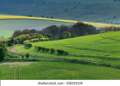 Sunlight plays over fields and hedgerows on the South Downs close to Lewes in East Sussex