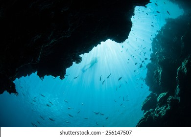 Sunlight pours down into a dark underwater grotto on the barrier reef in Palau, Micronesia. Palau is known for its beautiful rock islands and world class scuba diving and snorkeling.