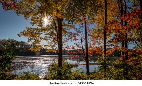 Sunlight reflected off a pond as seen through trees showing colorful autumn foliage