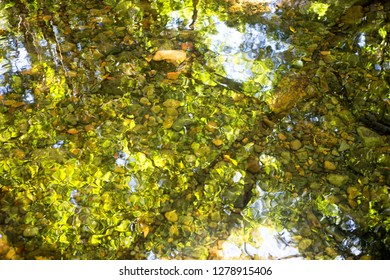 Sunlight and reflections on Oliver Creek in The Daintree, Tropical North Queensland, Australia
