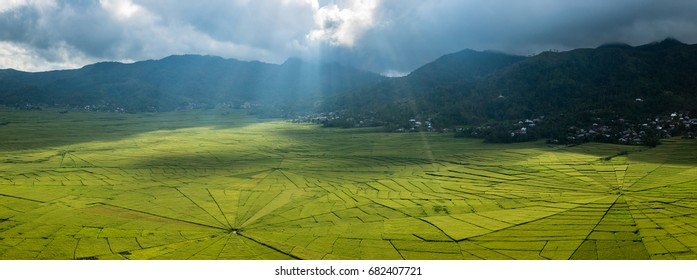 The sunlight is shining through clouds at spider rice field, Flores, Indonesia
